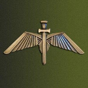 Bophuthatswana SF Operators Badge - I like the wing design.
