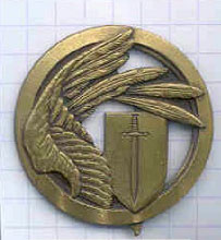 Unidentified French Air Force badge (1960's?) - I really like the overall design!