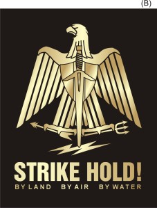 strike-hold-logo-14-ns-mod-iib