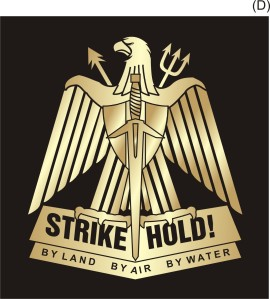 strike-hold-logo-14-ns-mod-iic