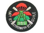 SBS old